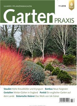 Gartenpraxis Cover