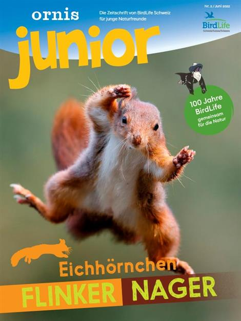 Cover des Magazins ornis junior